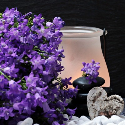 flowers-2065789