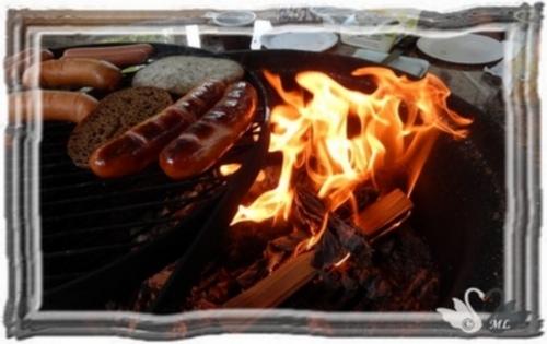 grillaamassa